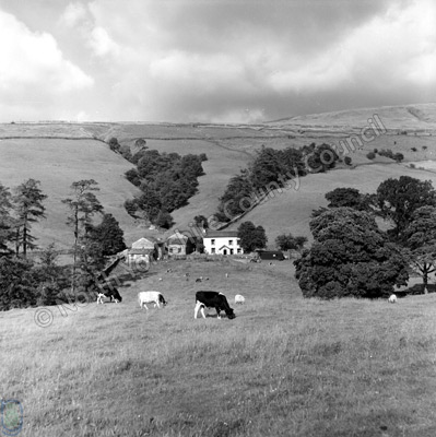 Dentdale Farm
